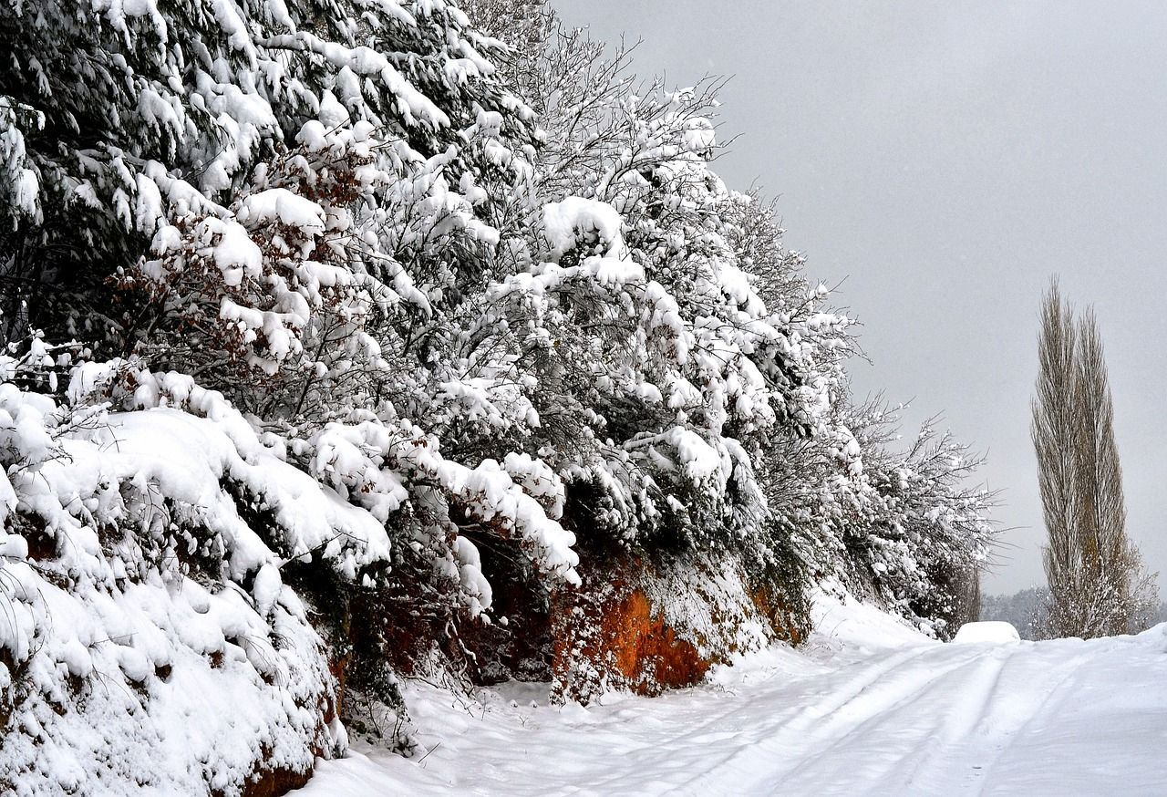 Аномально холодная погода ожидается в Приморье 22-26 января — власти