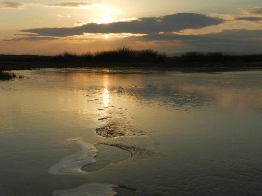 В Приморье зафиксировано самое тёплое за всю историю наблюдений 18 февраля