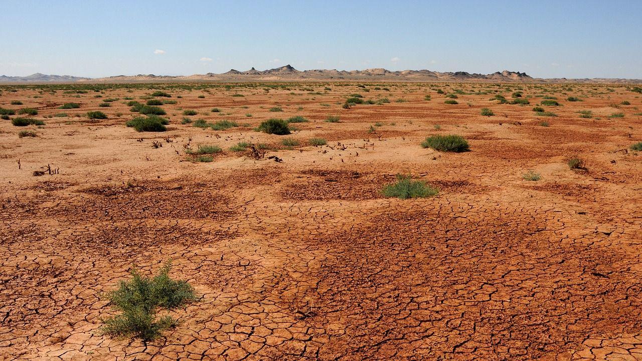Пустыня в Поднебесной