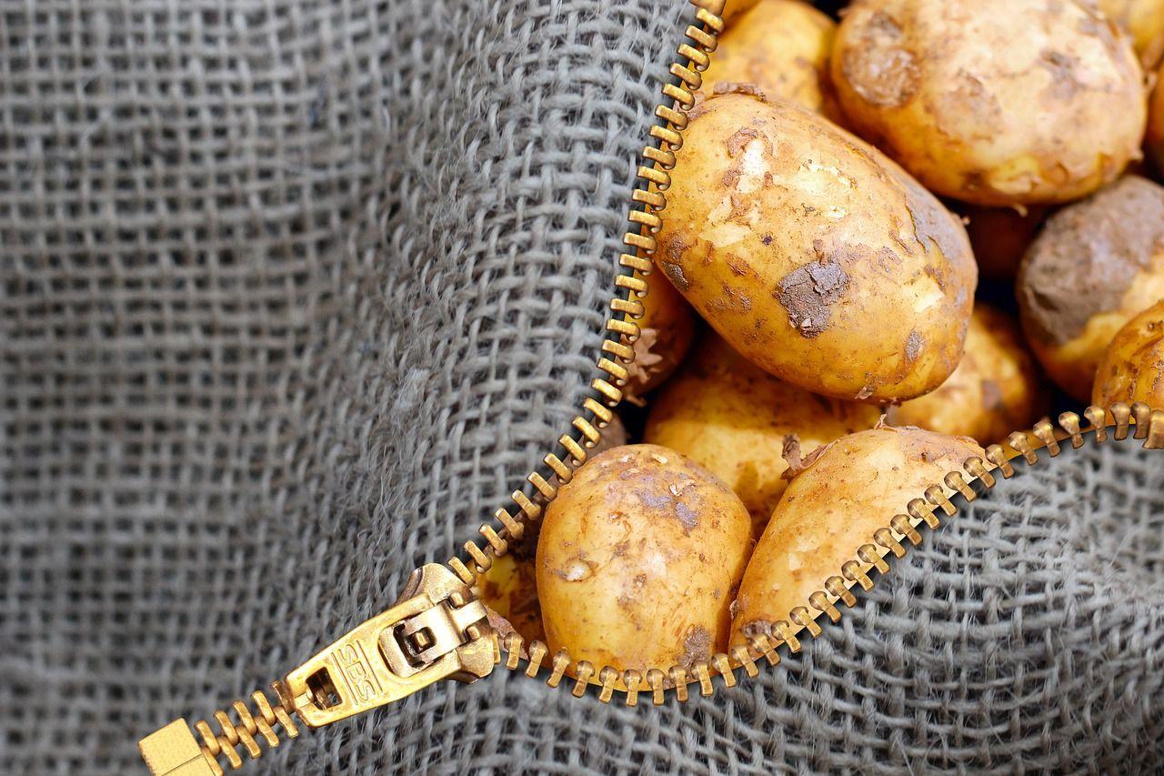 Во Владивостоке грабитель отобрал у пенсионерки сумку с продуктами