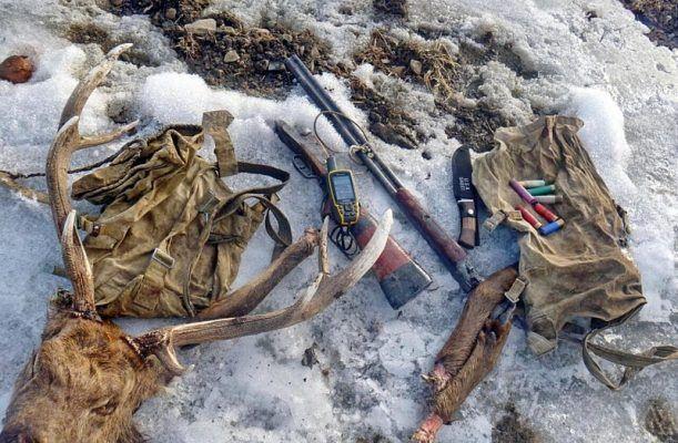 Более 120 единиц оружия и 46 туш диких животных изъяли у приморских браконьеров в 2017 году