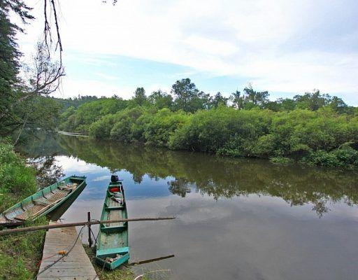 Туризм на территории нацпарка «Бикин» в Приморье предложили развивать на внебюджетные средства