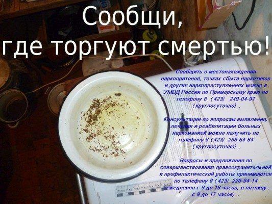 В Приморье стартовала антинаркотическая акция «Сообщи, где торгуют смертью»