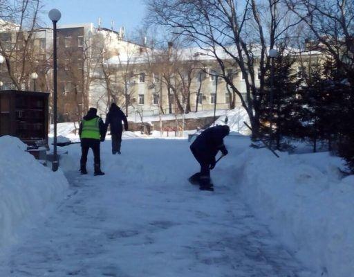 Во Владивостоке ходовым товаром стали лопаты, а востребованной услугой — уборка снега