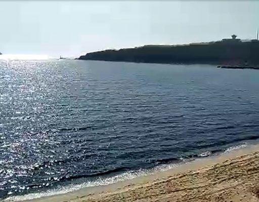 Во Всемирный день океанов во Владивостоке подведут итоги детского художественного конкурса
