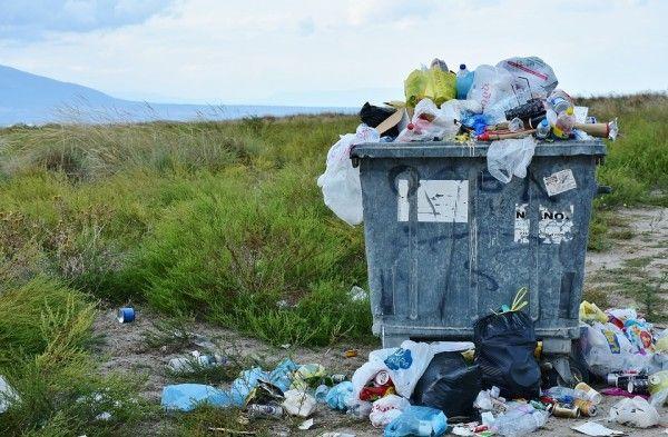 Штрафы до 500 тыс. рублей ввели в Приморье за ненадлежащее содержание площадок для вывоза мусора