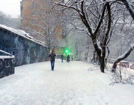 «Прошу поддержать лопатами или терпением»: глава Владивостока обратился к жителям