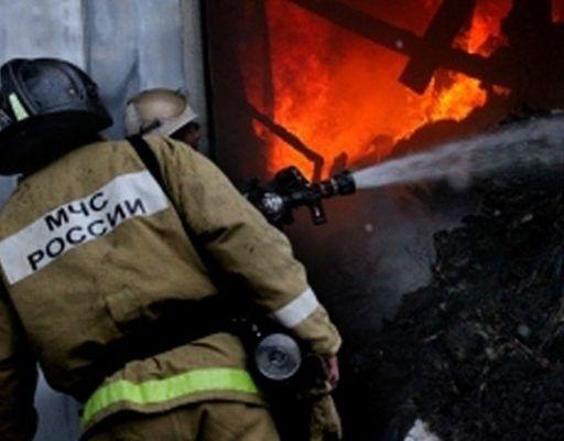 Страшный пожар во Владивостоке: в конно-спортивном клубе пострадали люди и животные