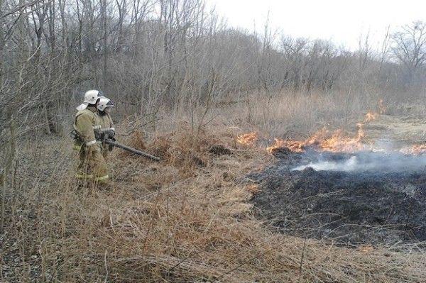 В 19 муниципалитетах Приморья объявили открытие пожароопасного сезона