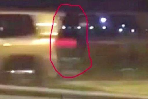 Фантом не на шутку испугал автомобилистов на трассе Владивосток — Хабаровск