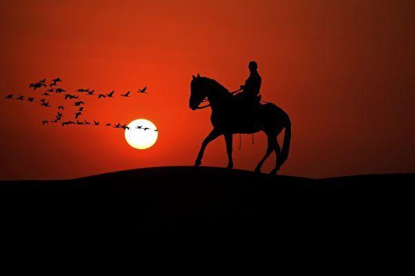 Приморец, взявшись перегнать чужого коня, продал его приятелю и попал под суд