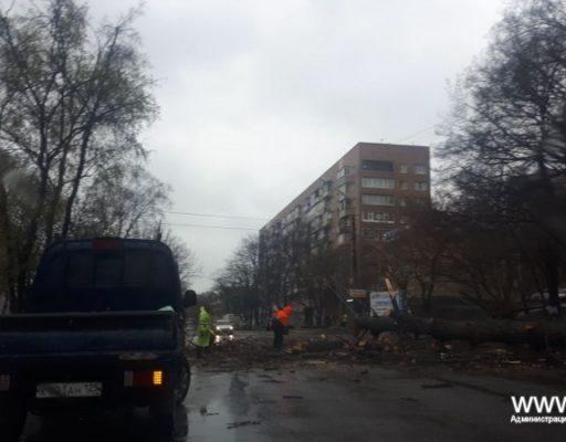 Трамваи и троллейбусы вышли на маршруты: во Владивостоке устраняют последствия мощного циклона