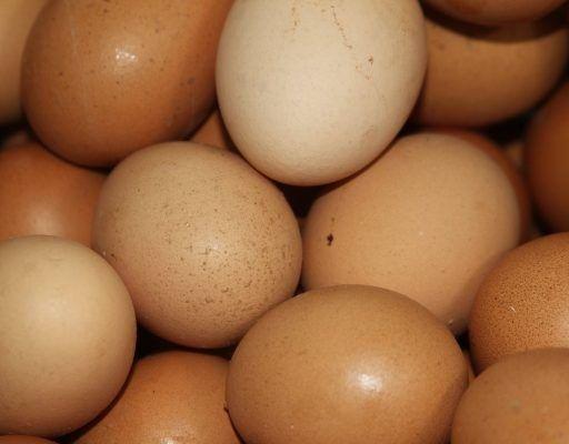 В Приморье из Хабаровска не пустили более 300 тысяч куриных яиц