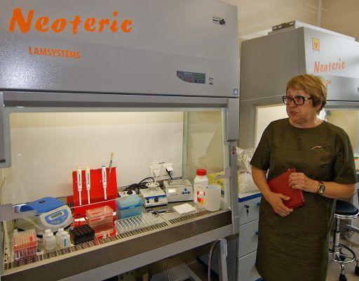Редкие виды вирусов будут изучать во Владивостоке