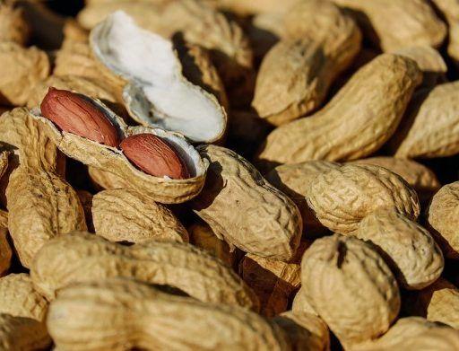 Во Владивосток не пустили 19 тонн токсичного арахиса из Китая