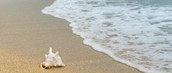 Пляж, море, песок, волна, летний отдых