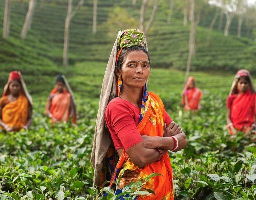 После потери рабочих из КНДР компании Приморья заинтересовались индийскими