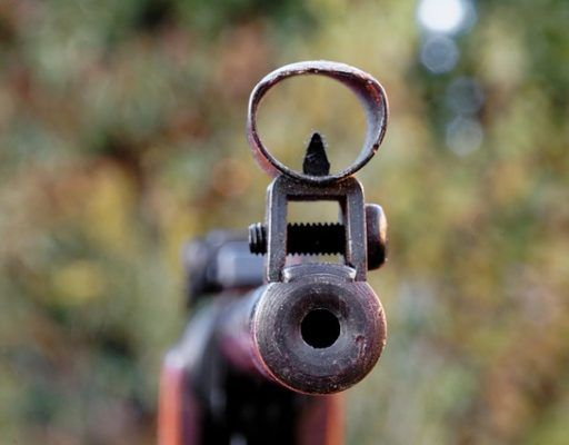 «Я ваших собак застрелю»: мужчина с оружием в руках угрожал жительнице Владивостока