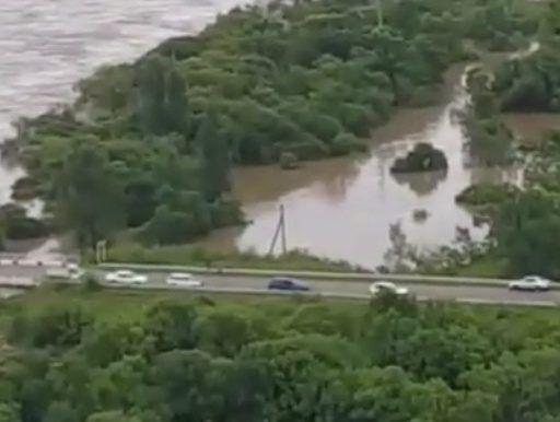 Ущерб сельскому хозяйству Уссурийска от паводка оценили в 250 млн рублей