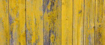 Ремонт, дерево, забор, стена, потолок, краска, старый