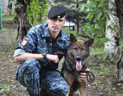 Полицейская собака Арэс помогла раскрыть кражу во Владивостоке