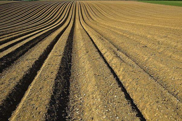 Минеральные удобрения в Приморье будут выпускать на новом предприятии