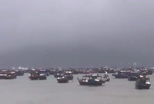 Впечатляющее зрелище: сотни северокорейских шхун укрылись от шторма в Приморье