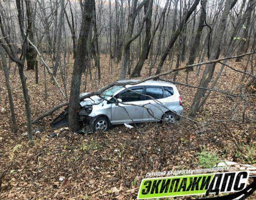 В Приморье легковушка «слетела» с дороги и врезалась в дерево