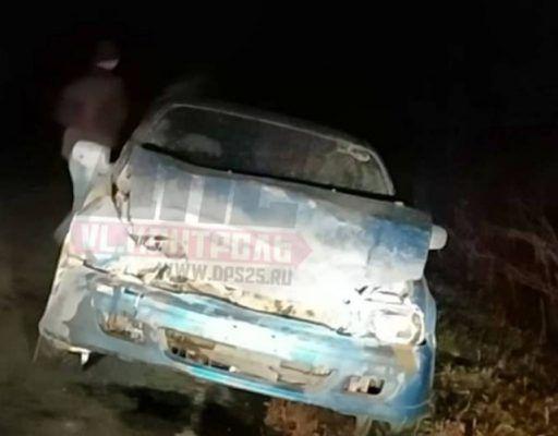 В Приморье автомобилист на полном ходу врезался в кабана