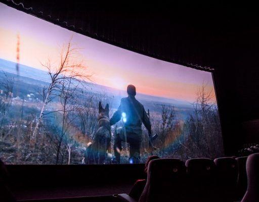 «Моё кино»: конкурсы короткометражного кино и клипов, а также питчинг пройдут в Приморье