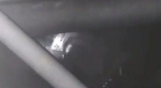 Прокуратура заинтересовалась домами «на болоте», которые выдали в Приморье детям-сиротам