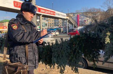 Во Владивостоке наказали незаконных торговцев ёлками