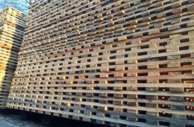 Миллион долларов США за экспортированный лес не вернулся в Приморье