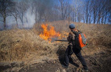 С начала осени в Приморье возникло 26 природных пожаров