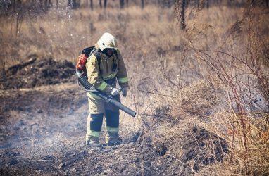 В Приморье за выходные потушили три лесных пожара