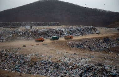 На решение «мусорного» вопроса во Владивостоке направят 85 млн рублей