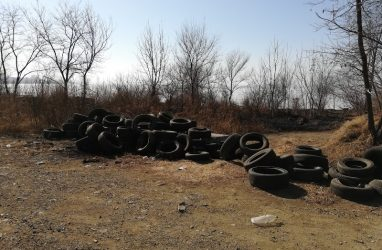 В Большом Камне и Дальнереченске займутся рекультивацией нарушенных земель на территориях свалок
