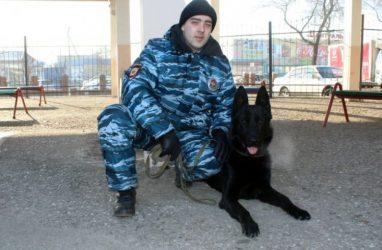 Служебная собака по кличке Бандит учуяла наркотики на автовокзале в Приморье