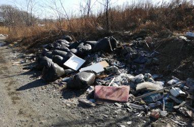 Один из пляжей Владивостока завалили строительным и бытовым мусором