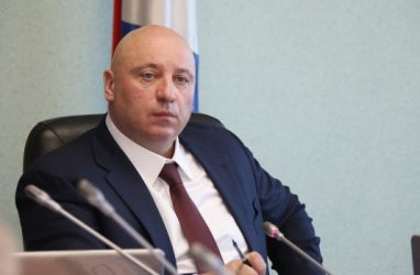 Уже 30 человек, включая Игоря Чемериса, захотели возглавить администрацию Владивостока
