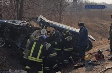 ДТП в Приморье с участием большегруза унесло жизни двух человек