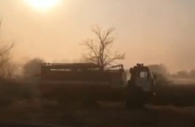 В Приморье из-за пала травы горят дома — очевидцы