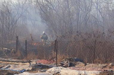В Приморье чуть не сгорели несколько сёл в Хасанском районе