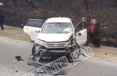 Страшное лобовое ДТП с грузовиком произошло в Приморье — видео
