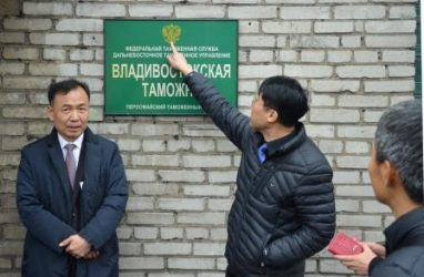 В регионе деятельности Владивостокской таможни с начала 2019 года внешнеторговый оборот с Южной Кореей превысил полмиллиона долларов