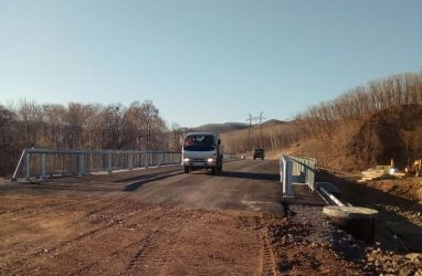 Губернатор Приморья поручил обратиться в прокуратуру по фактам повреждения мостов