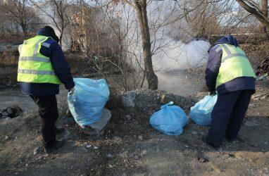 Реку Объяснения во Владивостоке можно спасти — специалисты