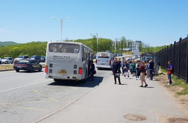 Мэрия Владивостока объявила тендер на поставку автобусов с электрическим двигателем
