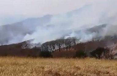 Приморцев шокировал пожар взаповедных местах