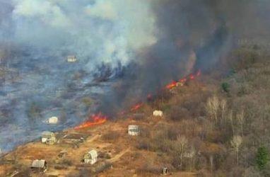 Природный пожар перекинулся на дачный посёлок в Приморье